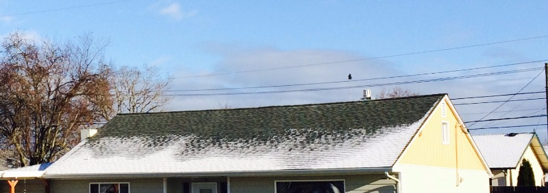 Roof of a house with snow on it.