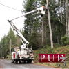mason-pud-3-linemen-in-mop-up-stage-after-late-fall-windstorm-pummels-the-county